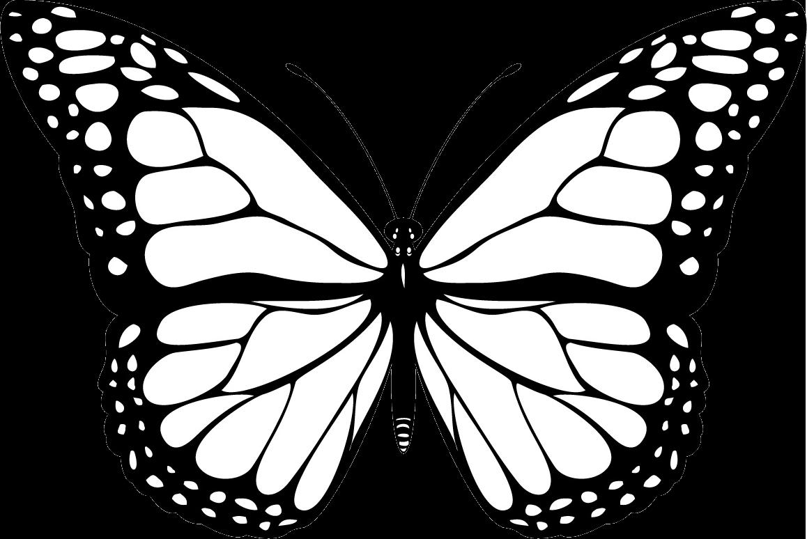 Uma borboleta na ponte de Babel